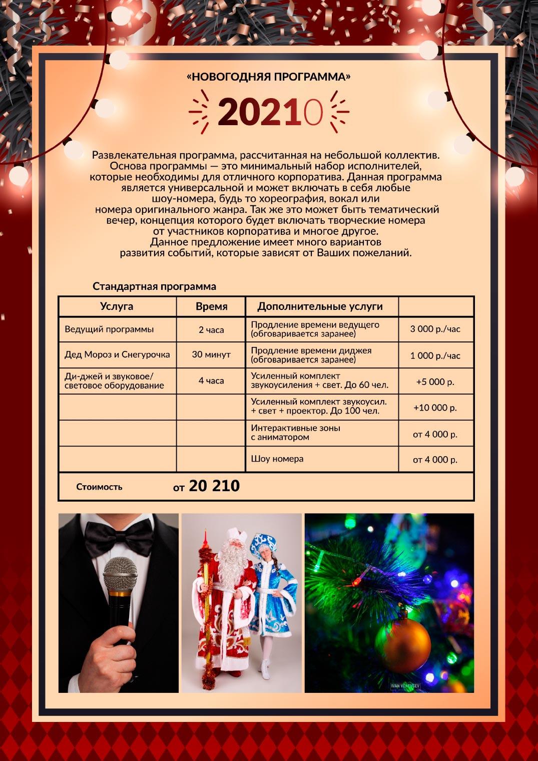 novogodnee_predlozhenie_2021_33-5